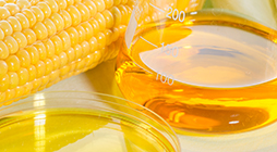 Refining of Vegetable Oils for Biofuels - KR